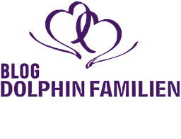 Dolphin Familiens Blog